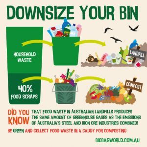 how to downsize your bin