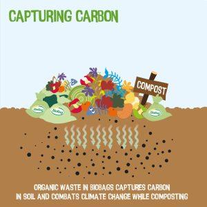 composting food scraps in biobags captures carbon in soil