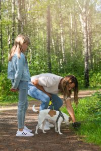 compostable BioBag dog waste bags